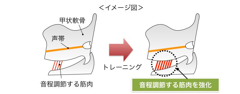 ロジカル・シンギングLandingPage6(wordpress_全面刷新版).033